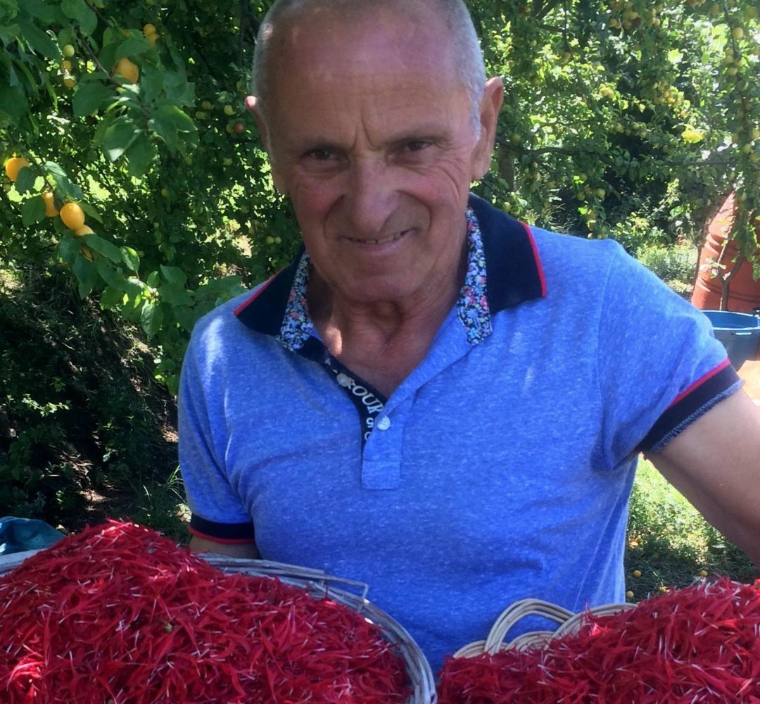 Agro-MAP social impact on farmers and families in rural Albania, Soziale Agenda