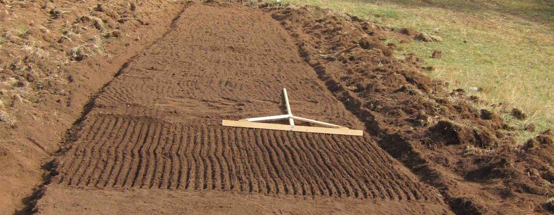 Agro-MAP test cultivation organic, Testanbau für Arznei- und Aromapflanzen