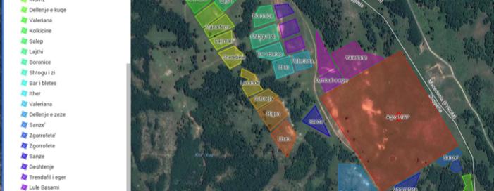 Agro-MAP contract cultivation Albania, Vertragsanbau für Arznei- und Aromapflanzen